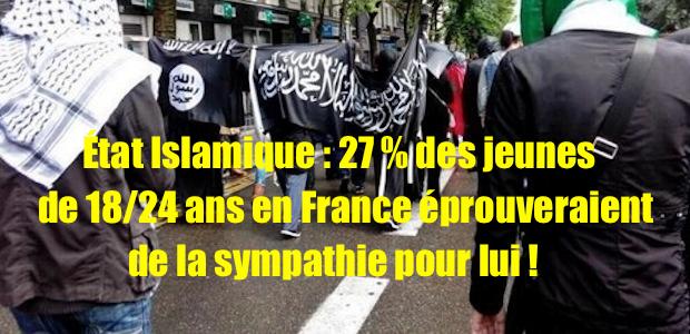 Paris-drapeau-EIIL-copie1