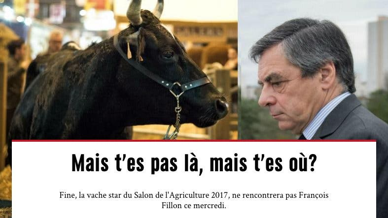 fillon agriculture