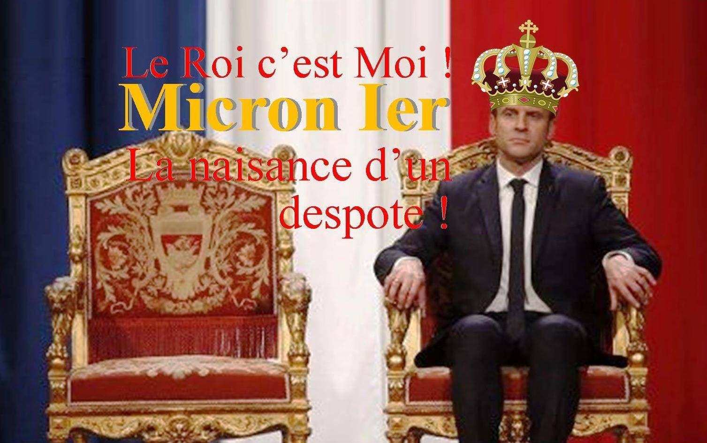GALERIE DU MONARQUE ABSOLU Micron-1er