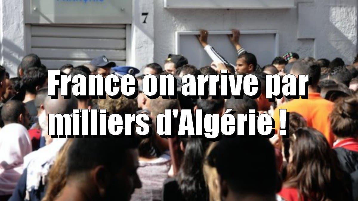 visas algérie