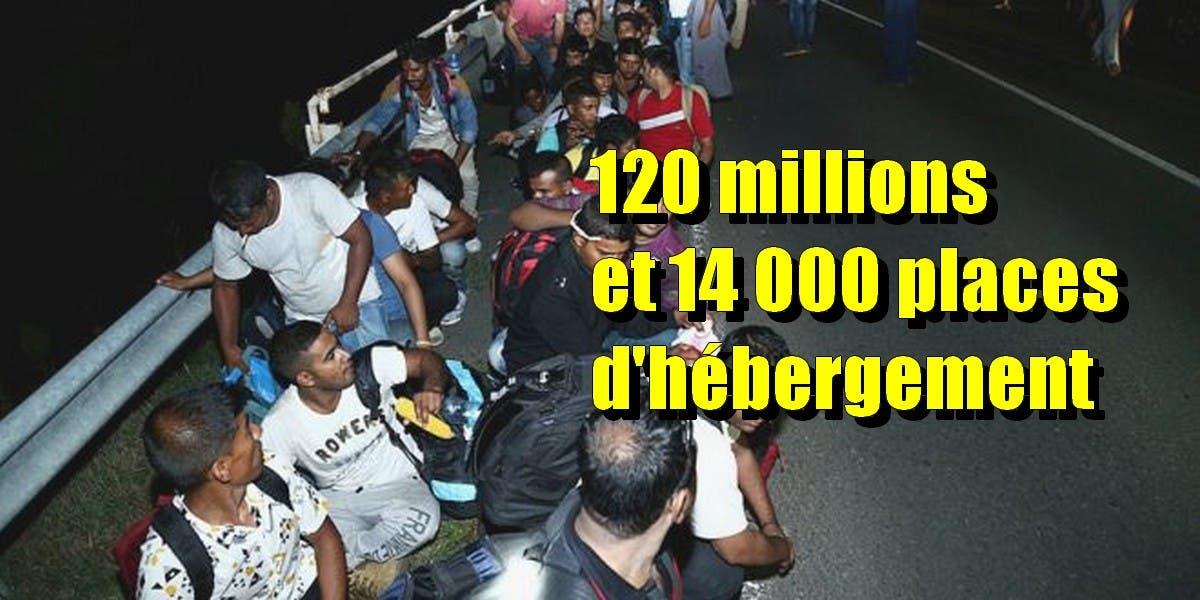 Migrants_in_Hungary_2015_Aug_003-660x330