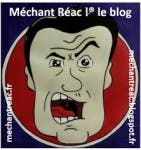 Méchant Réac Blogueur mechantreac.blogspot.fr/